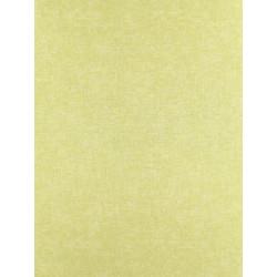 Papier peint ATELIER unis vert jaune par Casadeco