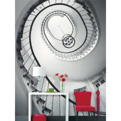 Panoramique Opéra - BLACK AND WHITE - Caselio - BTW61322056