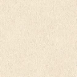 Papier peint blanc - African Queen II - RASCH