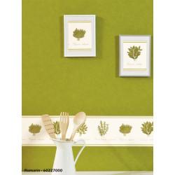 Frise papier peint Herbier - ROMARIN - Caselio