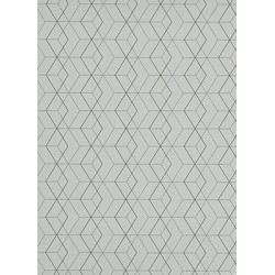 Papier peint Collector graphique blanc/argent - Erismann