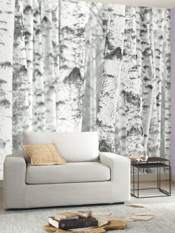 Poster panoramique bouleau caselio for Moquette grise texture